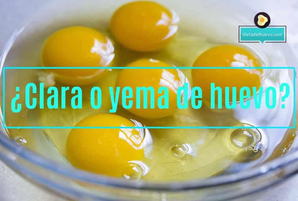 albumen y yema de huevo