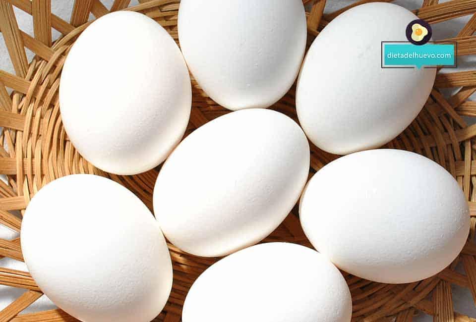 5 datos sobre los huevos que toda persona debe conocer