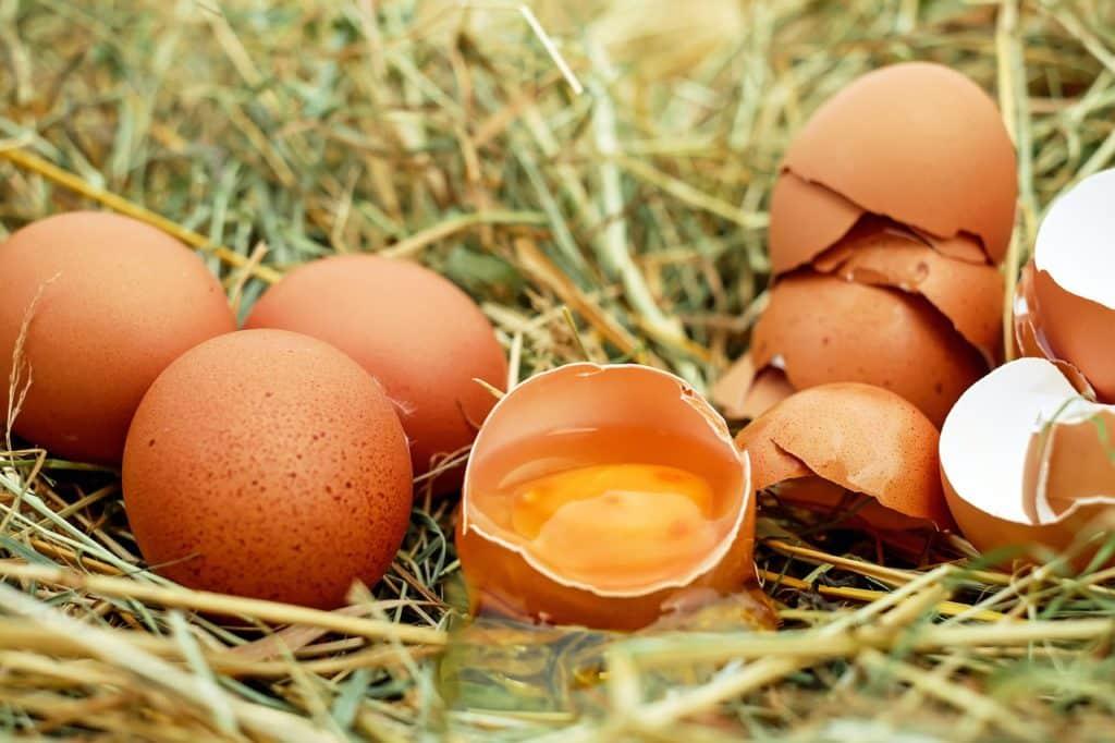 beneficios de la cascara de huevo