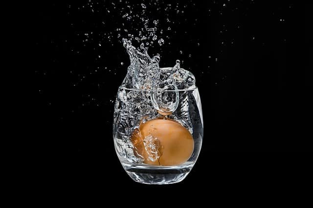 huevo flota