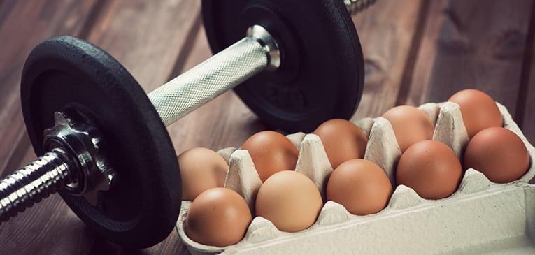 composición y estructura del huevo
