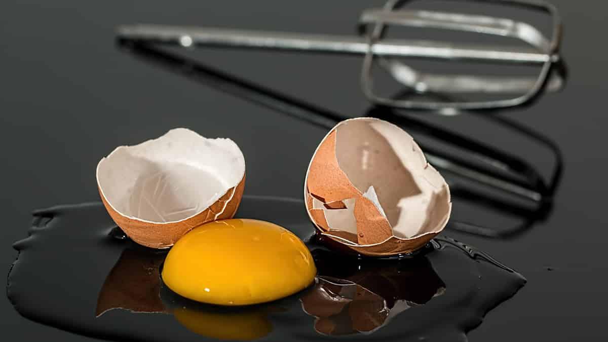 El Consumo de huevo en mujeres postmenopáusicas