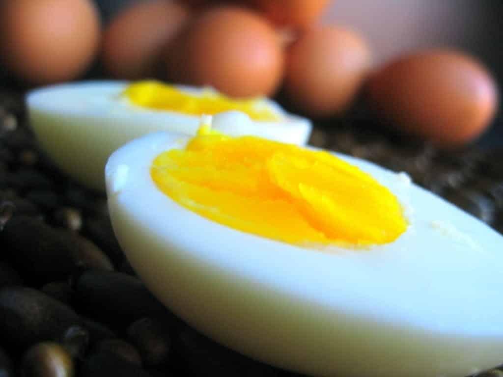 huevo y pan tostado solo dieta