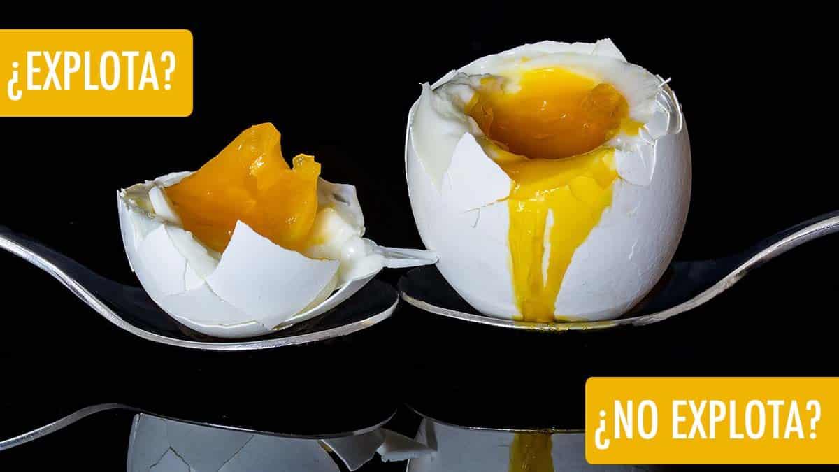 huevo en el microondas