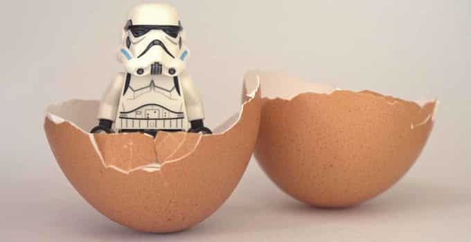 incubacion huevo abierto