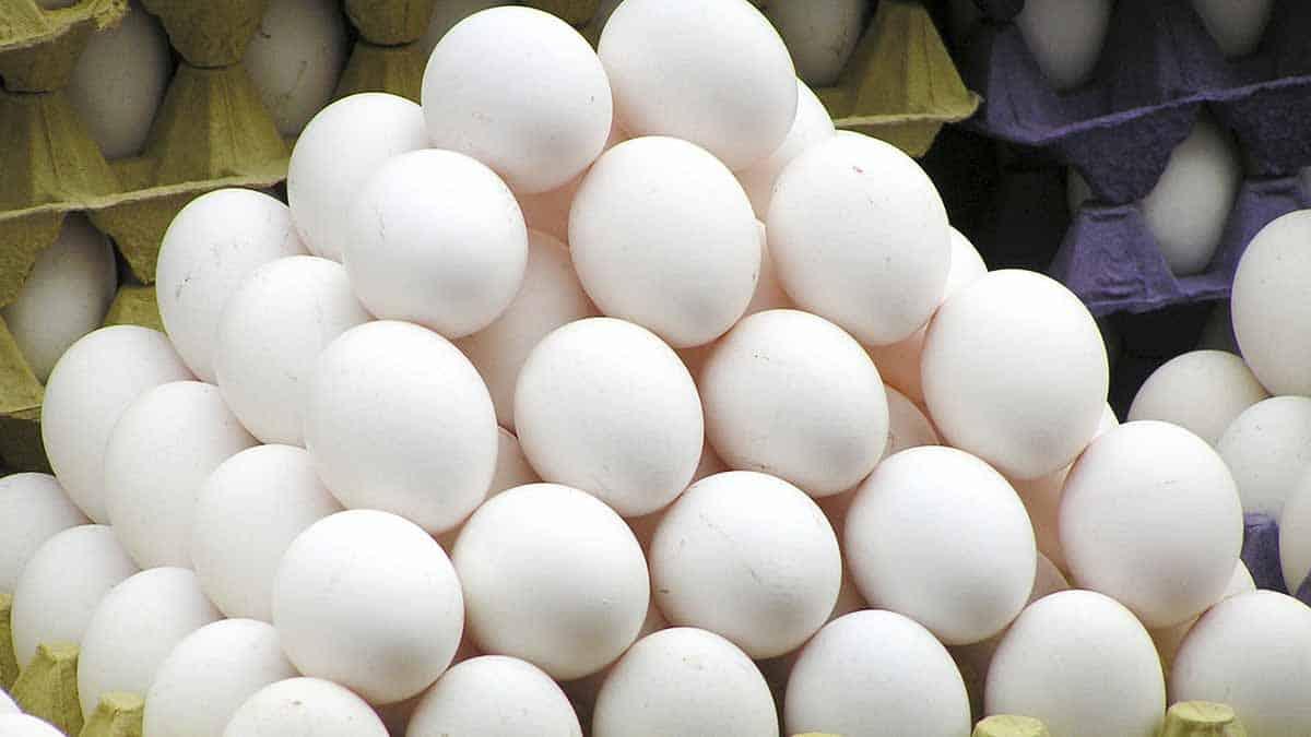 morir por comer huevos