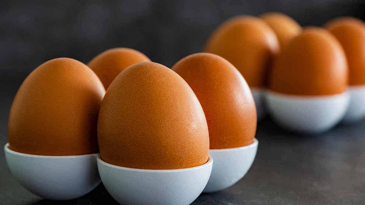 comer 1 huevo diario