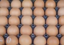 huevos en tik tok