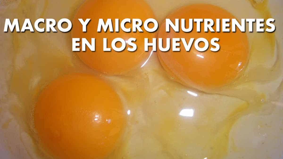 macro y micro nutrientes en los huevos
