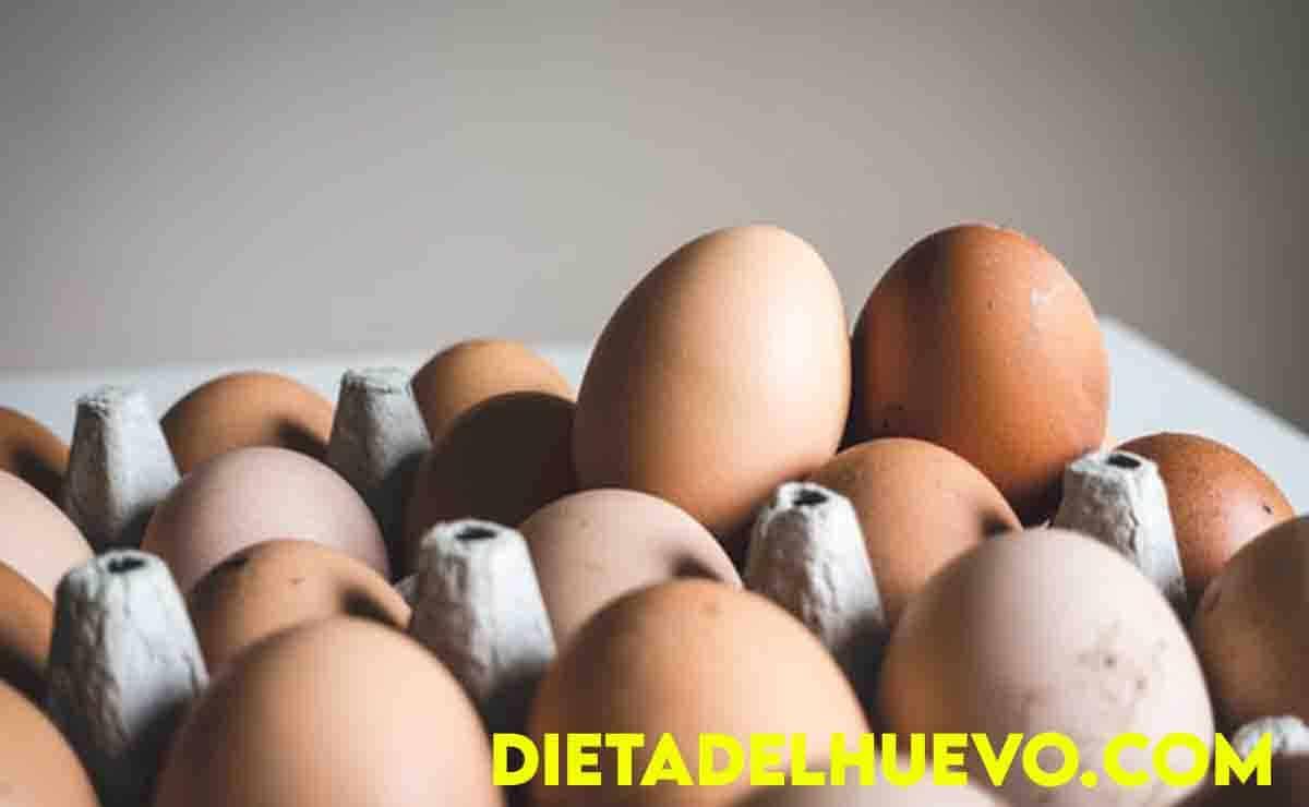 demanda de huevos en Pune