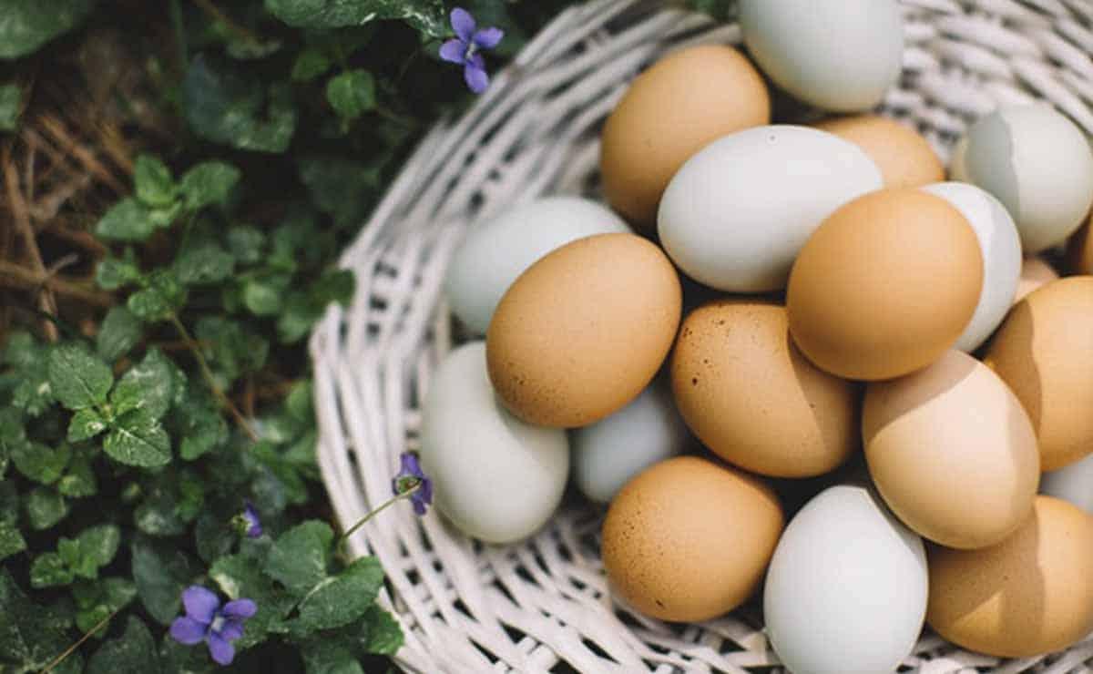 delivery de huevos