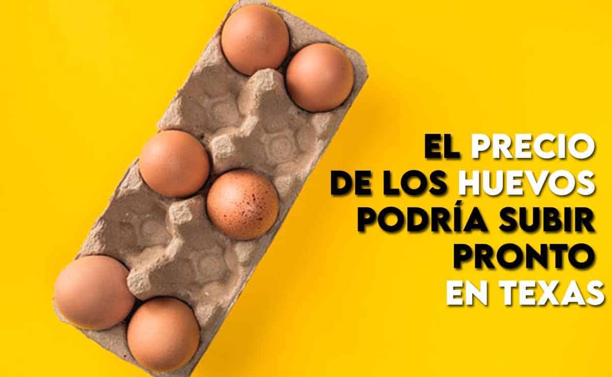 El precio de los huevos podría subir pronto en Texas 2021